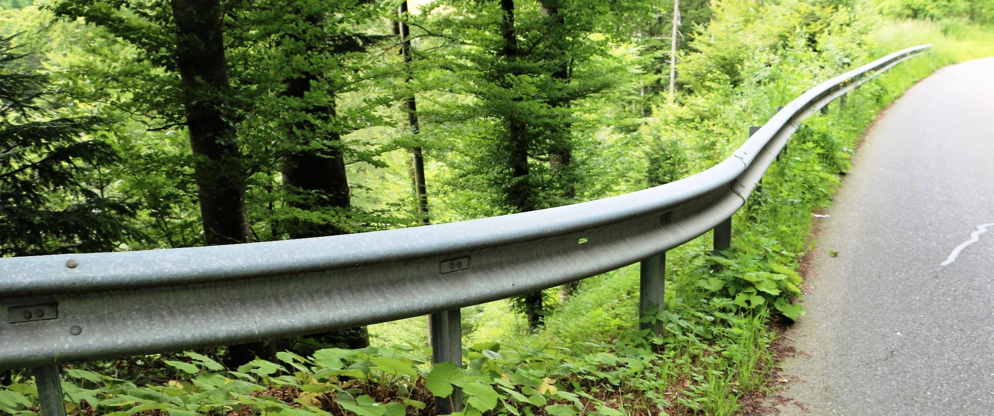 Leitplanke entlang einer Waldstrasse