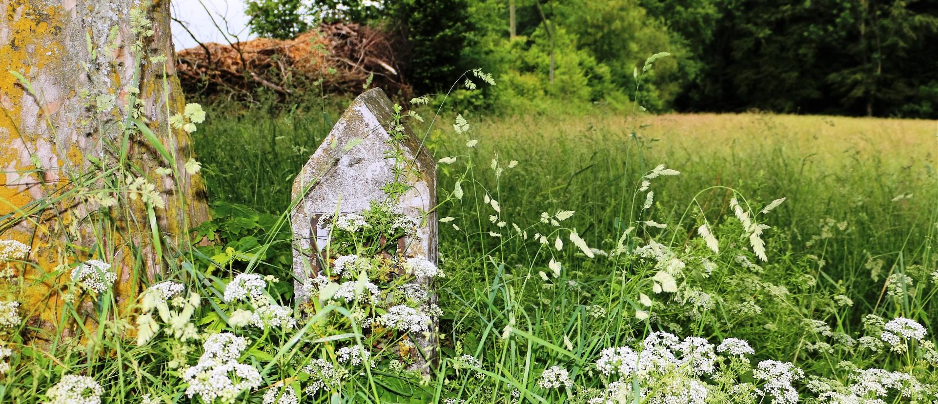 Meilenstein am Wegrand im Gras